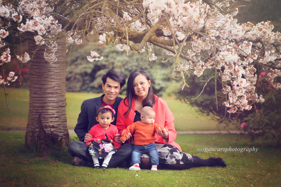 Tatton Park Gardens photo session, cherry blossom photo session